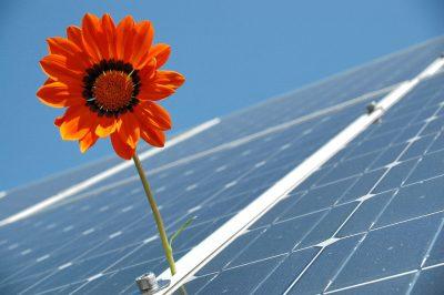 Solardach mit Blume