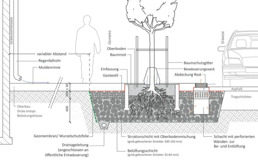 Stadtgrün: Andere Bäume & Pflanzgruben nach Stockholmer Modell