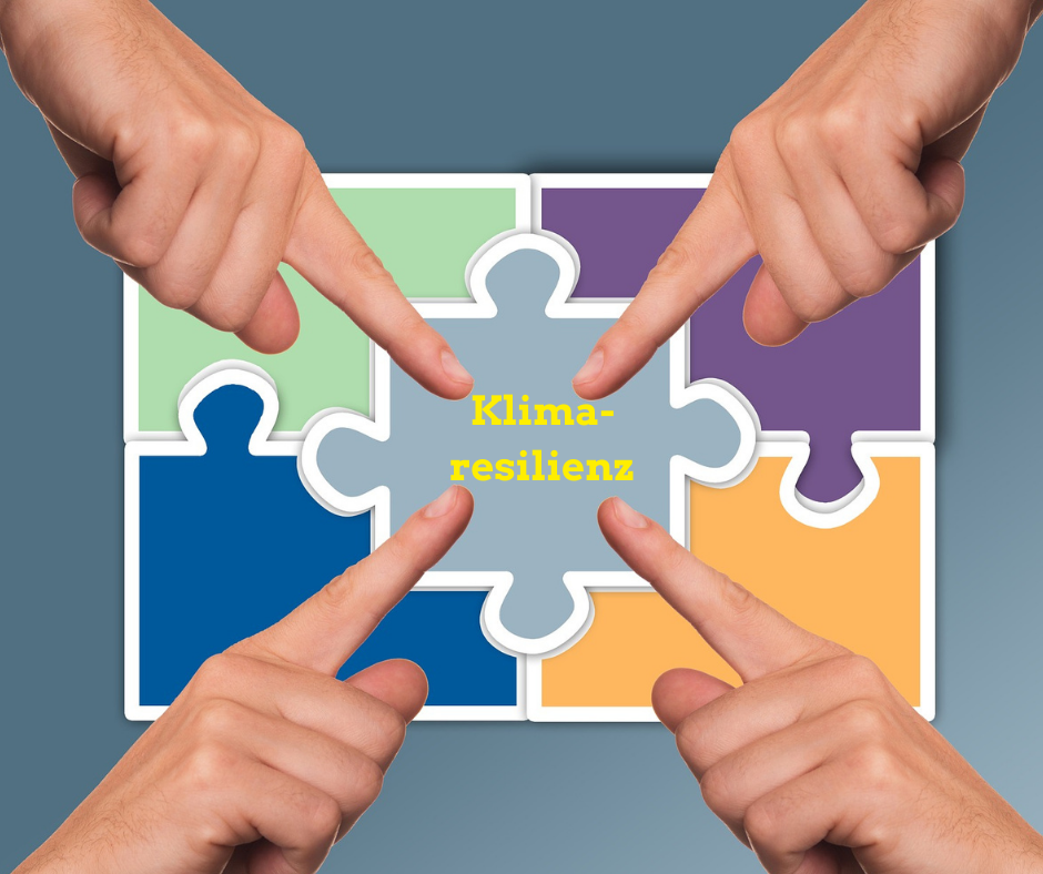 """Puzzle mit 5 Teilen. 4 Hände zeigen auf das mittlere Puzzlestück """"Klimaresilienz""""Klimaresilienz"""