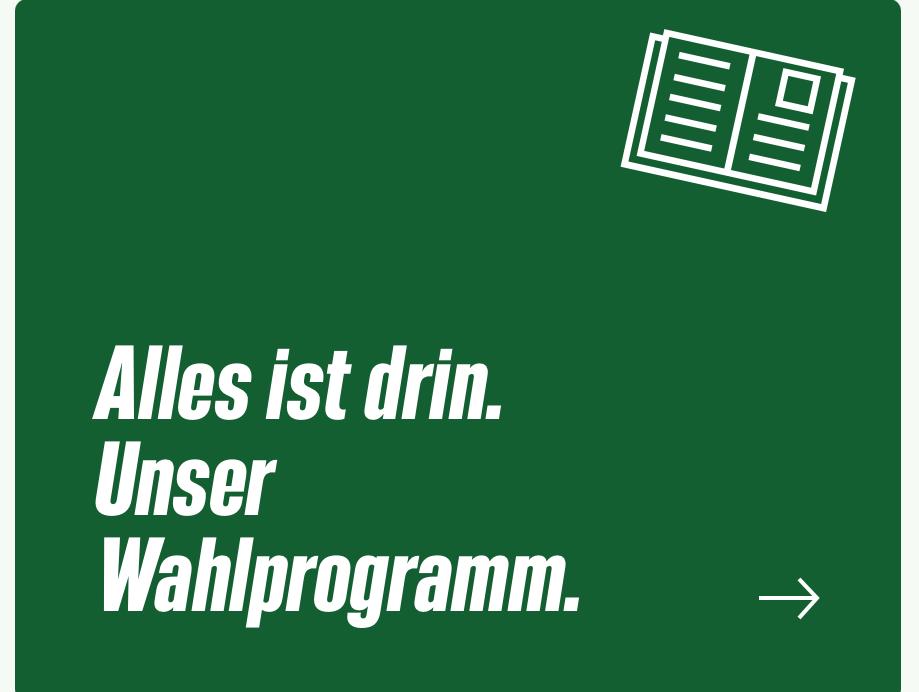 Alles ist drin. Unser Wahlprogramm für die Bundestagswahl